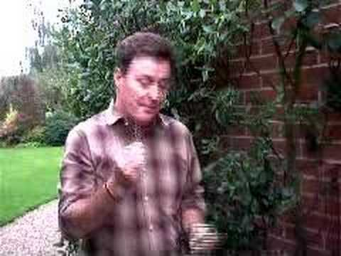 Hoggywart - Martin Fish from Garden News demonstrates a new product called Soft-Tie.