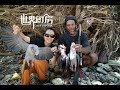 世界厨房之进山狩猎野鸽子   Wild pigeon hunting and BBQ in port vila ,vanuatu