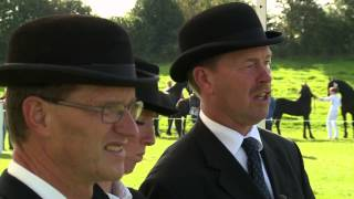 De top fan de Fryske hynders is dit wykein te besjen op de Sintrale Keuring yn Drachten. Yn it kongressintrum komme likernôch trijehûndert hynders by-inoar ú...