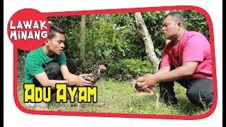 Video Adu Ayam #LawakMinang70 MP3, 3GP, MP4, WEBM, AVI, FLV Desember 2018