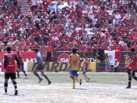 Tijuana vs Tigres de Nuevo León en el estadio Caliente