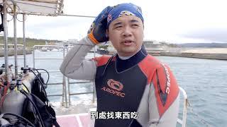 五花八門海蛞蝓