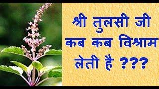 श्री तुलसी जी कब कब विश्राम लेती है !! Shri Tulsi Maharani Namoh Namah !!