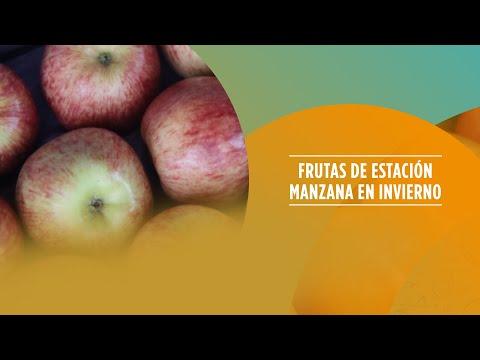 Frutas de estación - Manzana en invierno