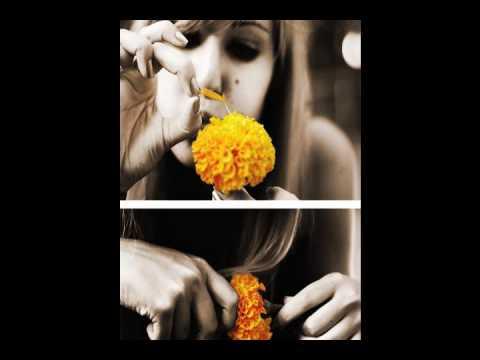 ibarra latin singles 40 000 latin women for dating brazilian women, colombian women, peruvian women, latin brides latin women online dating.