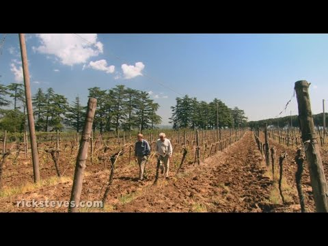 Orvieto, Italy: Family-Run Winery