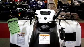 11. 2015 Kawasaki Brute Force® 300