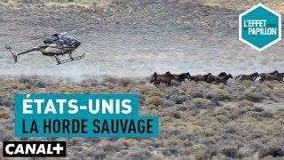 Video États-Unis : La horde sauvage - L'Effet Papillon– CANAL+ MP3, 3GP, MP4, WEBM, AVI, FLV Agustus 2018