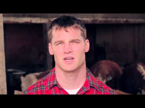Lest we forget, there is a small town of 5000 people in midwestern Ontario called Letterkenny. These are their problems.