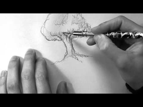 Zeichnung: Baum