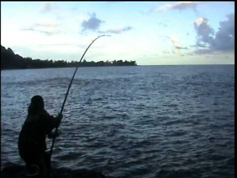 First Ulua 104.4 lbs – Kauai