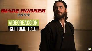 "Nonton Video Reacción: Corto ""Blade Runner 2036: Nexus Dawn"" (Subtitulado)   Fotograma 24 con David Arce Film Subtitle Indonesia Streaming Movie Download"