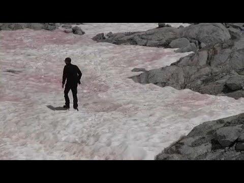 Ροζ πάγος στις ιταλικές Άλπεις – Ανησυχούν οι επιστήμονες…