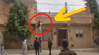 German Shepherd Chained To Balcony Is Rescued After Jump Leaves Her Hanging by Did You Know Animals?