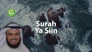 Video Surah YASIN Merdu dan Menyejukkan - Mishari Rasyid Al-Afasy MP3, 3GP, MP4, WEBM, AVI, FLV November 2018