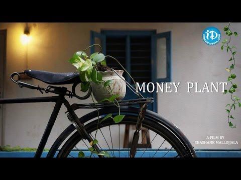 Money Plant | Latest Telugu Short Film