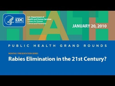 Rabies Elimination in the 21st Century