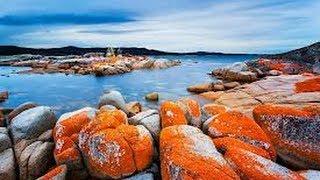 Binalong Bay Australia  city photos gallery : Bay Of Fires (Tasmania)