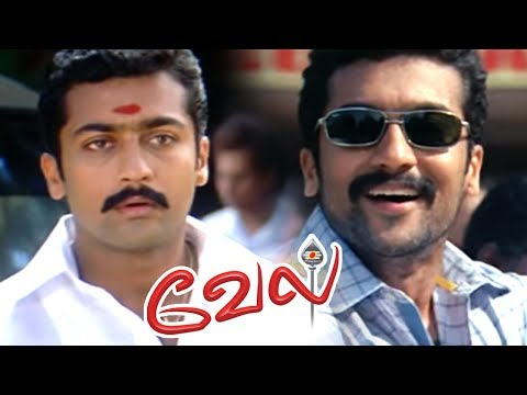 Video Vel full Movie | Vel Movie scenes | Suriya meets his Twin brother | Suriya and Asin gets Engaged download in MP3, 3GP, MP4, WEBM, AVI, FLV January 2017