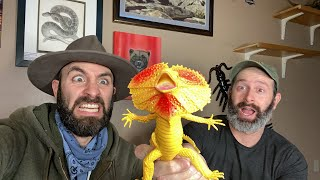 BRAVE the WILD - Dragons and Geckos! by Brave Wilderness