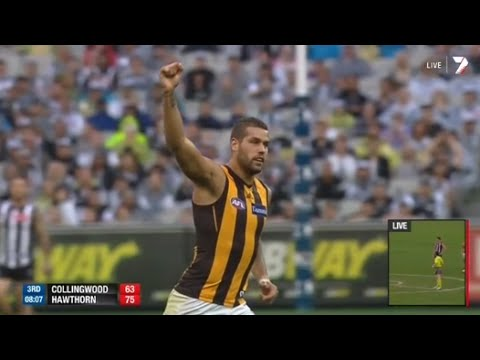 hawthorn - Hawthorn brought there magnificent form from Patersons Stadium to the MCG on Sunday, beating the pies by 55 points. It was a slow first half for the Hawks, b...