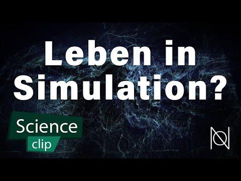Leben wir in einer Simulation?