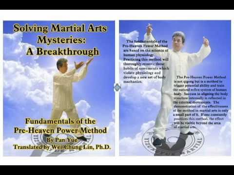 發勁发劲Yizungyue - This video shows the advanced fajin (fajing) exercises described in Sections 4.2 and 4.3 of the book