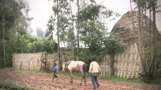 Tackling Malnutrition In Chencha, Ethiopia | World Vision UK