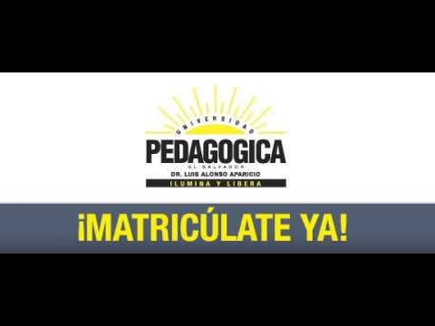Pedagógica campaña ciclo 02-2014