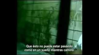 Damian marley ft Nas - road to zion subtitulado en español