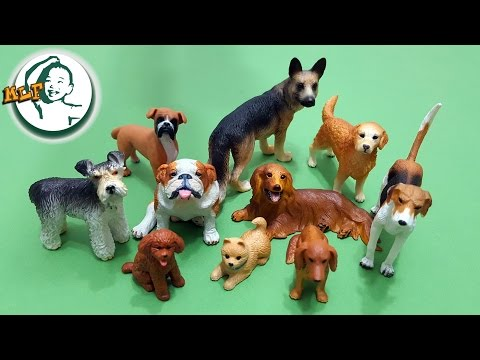 Learn 10 most popular dog breeds for kids with TOMY pet animals and more toy dogs | トップ10最も人気のある犬の品種