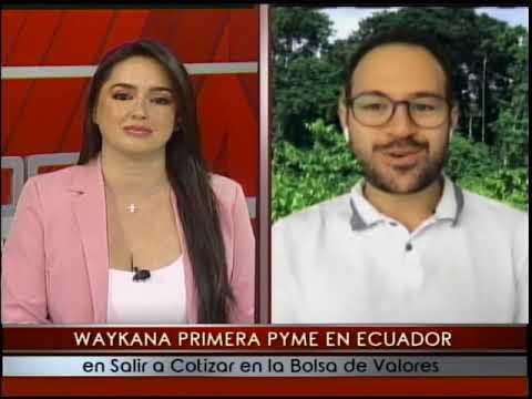 Waykana trabaja en el cultivo producción y exportación de la Guayusa