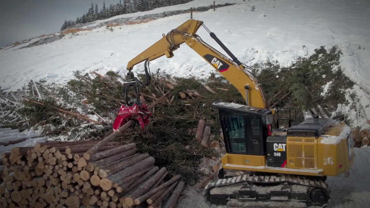 Cat® 548 Forest Machine