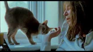 Patti Smith - Dream Of Life  ❣
