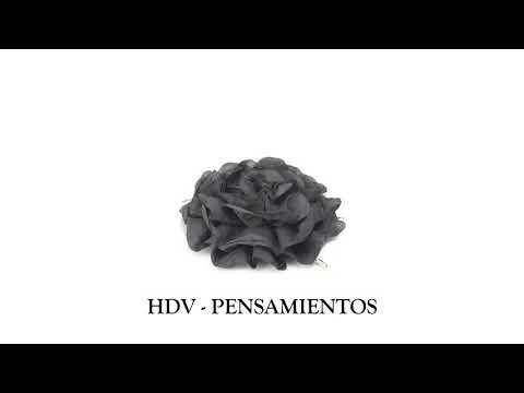 Pensamientos de amor - HDV - PENSAMIENTOS (VIDEO LYRICS)