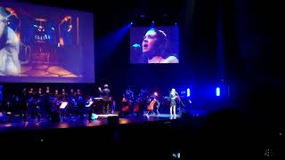Video Games Live 2010 - Paris - Medley Blizzard