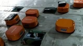 Chińczycy mają rozmach – setki robotów same sortują paczki w firmie kurierskiej.