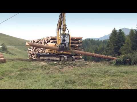 Alla scoperta dei cantieri del Consorzio forestale lario intelvese