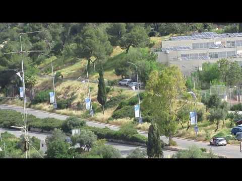 Yom Hashoah: la sirène retentit en Israël