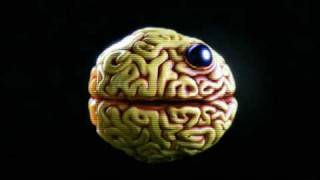 GAZETA - BRAINJUNK