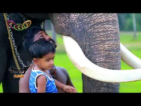 Video Aanaperuma Vayloor Parameswaran download in MP3, 3GP, MP4, WEBM, AVI, FLV January 2017