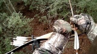 Video Traditional Recurve Deer Hunt 2017 MP3, 3GP, MP4, WEBM, AVI, FLV Agustus 2017