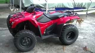 1. 2008 Rancher 420 ES EFI 4x4 (Overview)