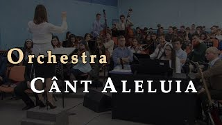 Orchestra – Cant Aleluia