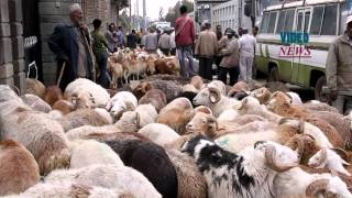 Easter Preparations On Holy Saturday In Ethiopia