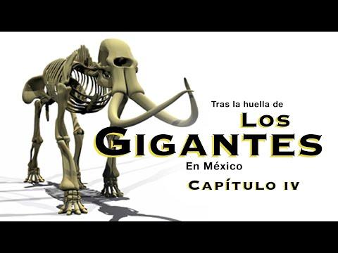 Los Gigantes del Valle de México en la Edad de Hielo IV