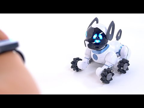 Chip robot dog