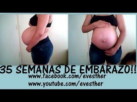 8 meses de embarazo cuantas semanas son videos videos relacionados con 8 meses de embarazo - 8 meses de embarazo ...