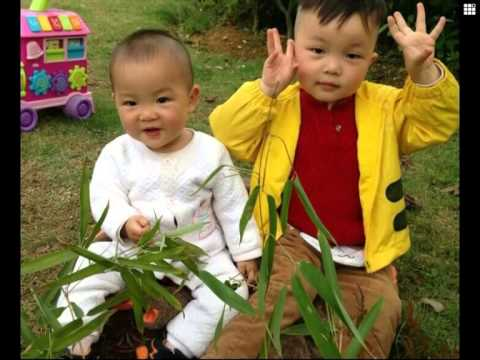 3 years old organ donor from china saves 5 people after death