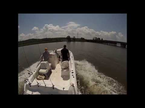 Father's Day Fishing 2013 Mobile Alabama
